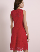 Millie Lace Dress in Red by Bravissimo Dresses