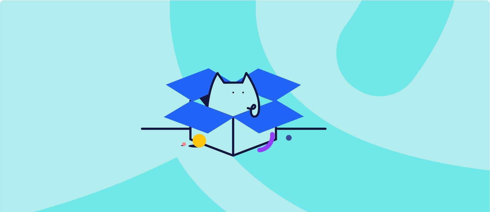 Cat in a Dropbox