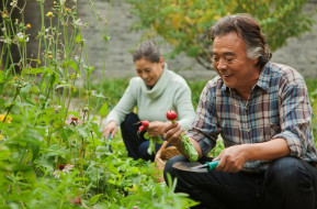 Comfortabel & Convenient Gardens for Retirees