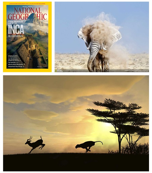 National Geographic: Vast, stunning imagery of nature and wildlife. Vibrant, contrasty, epic.