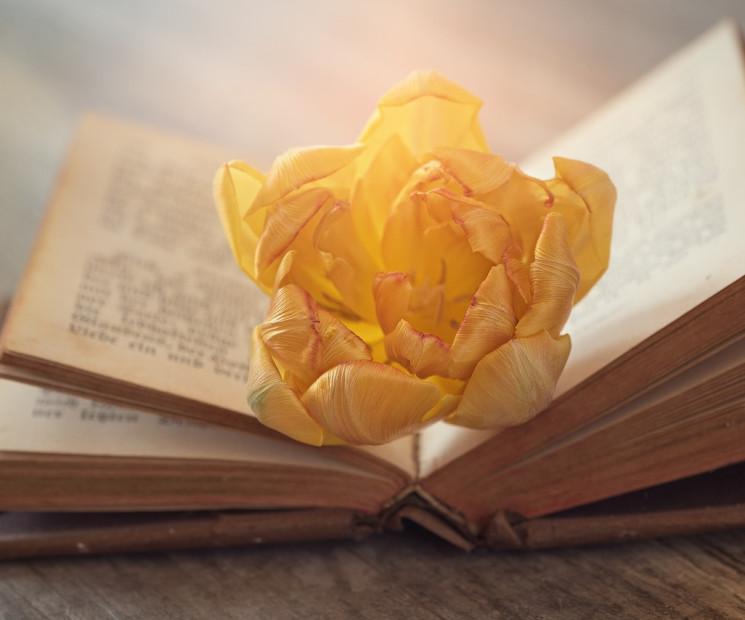 Oster Gedichte Klassische Und Moderne Gedichte Zu Ostern