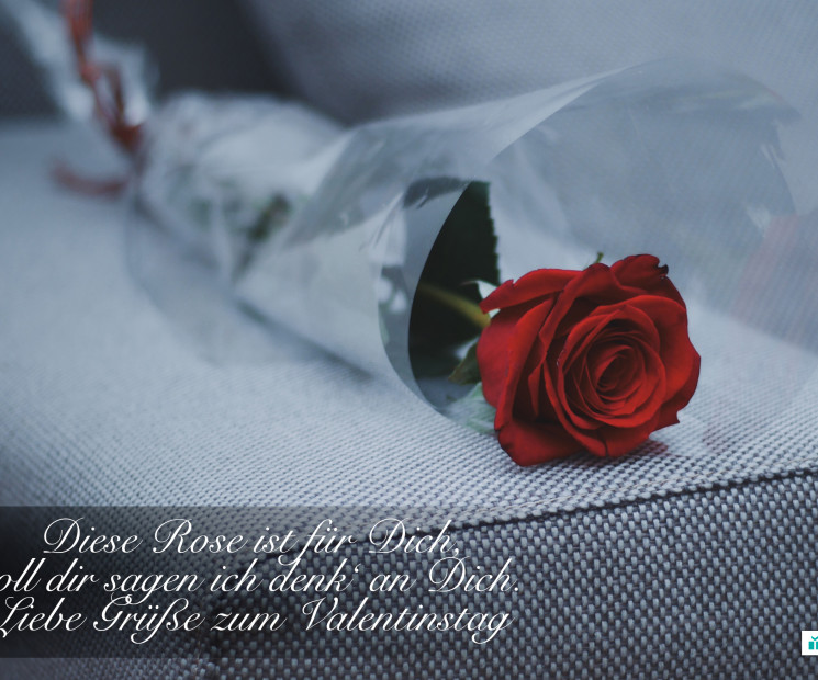 Valentinstag Bilder Die Schönsten Bilder Zum Kostenlosen