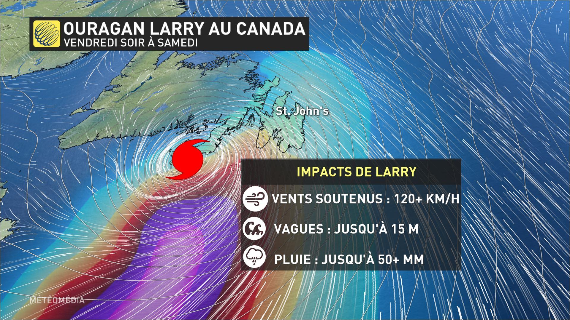 Larry 4