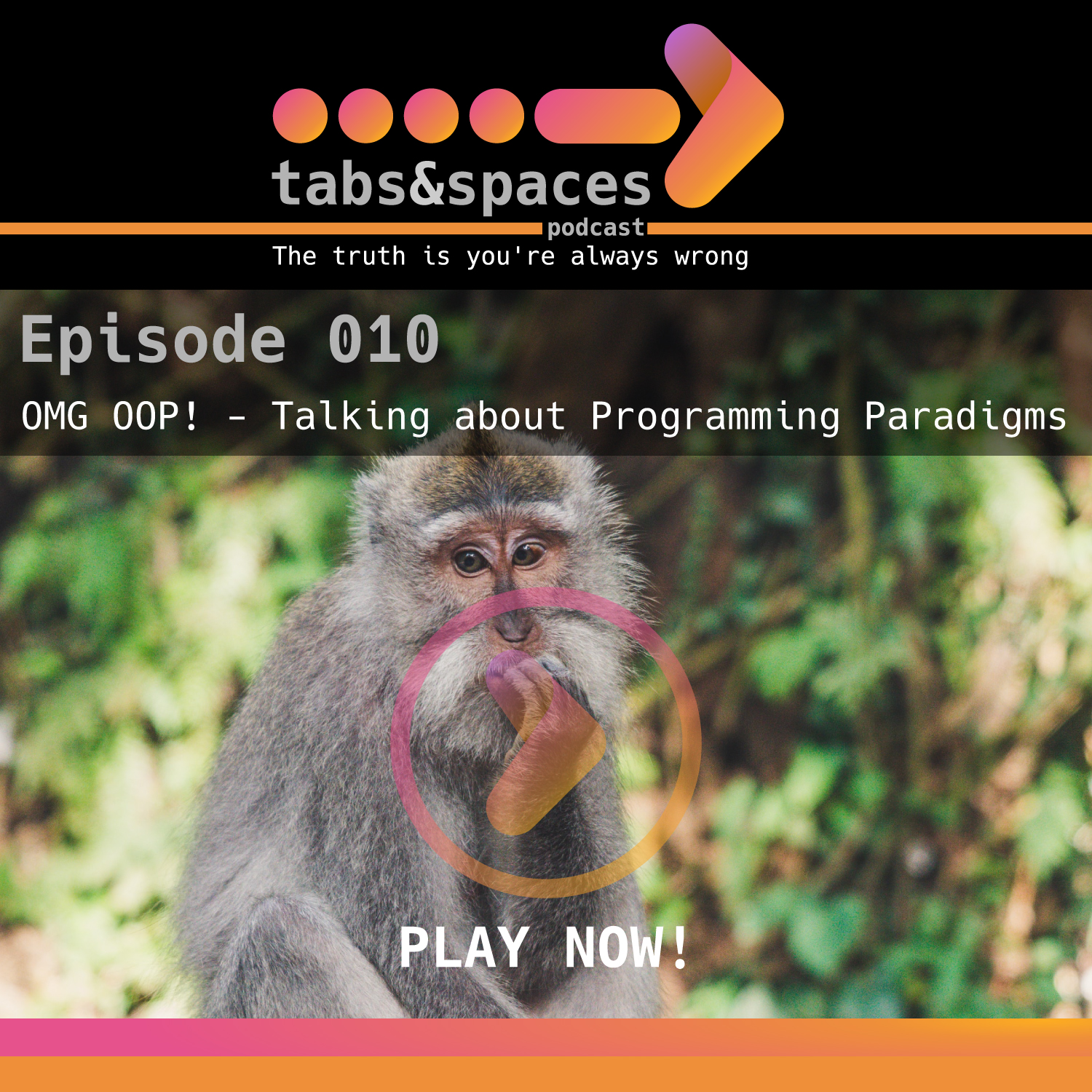 Episode 10 is about programming paradigms and our limited experience with them