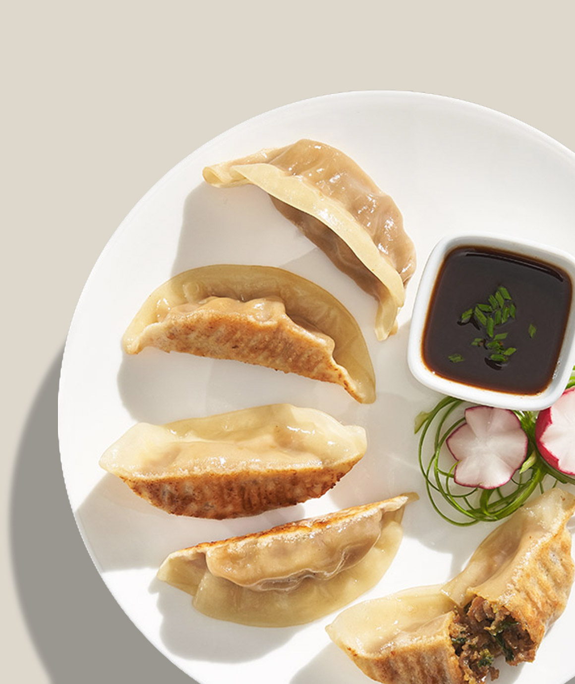Teriyaki Chicken Potstickers