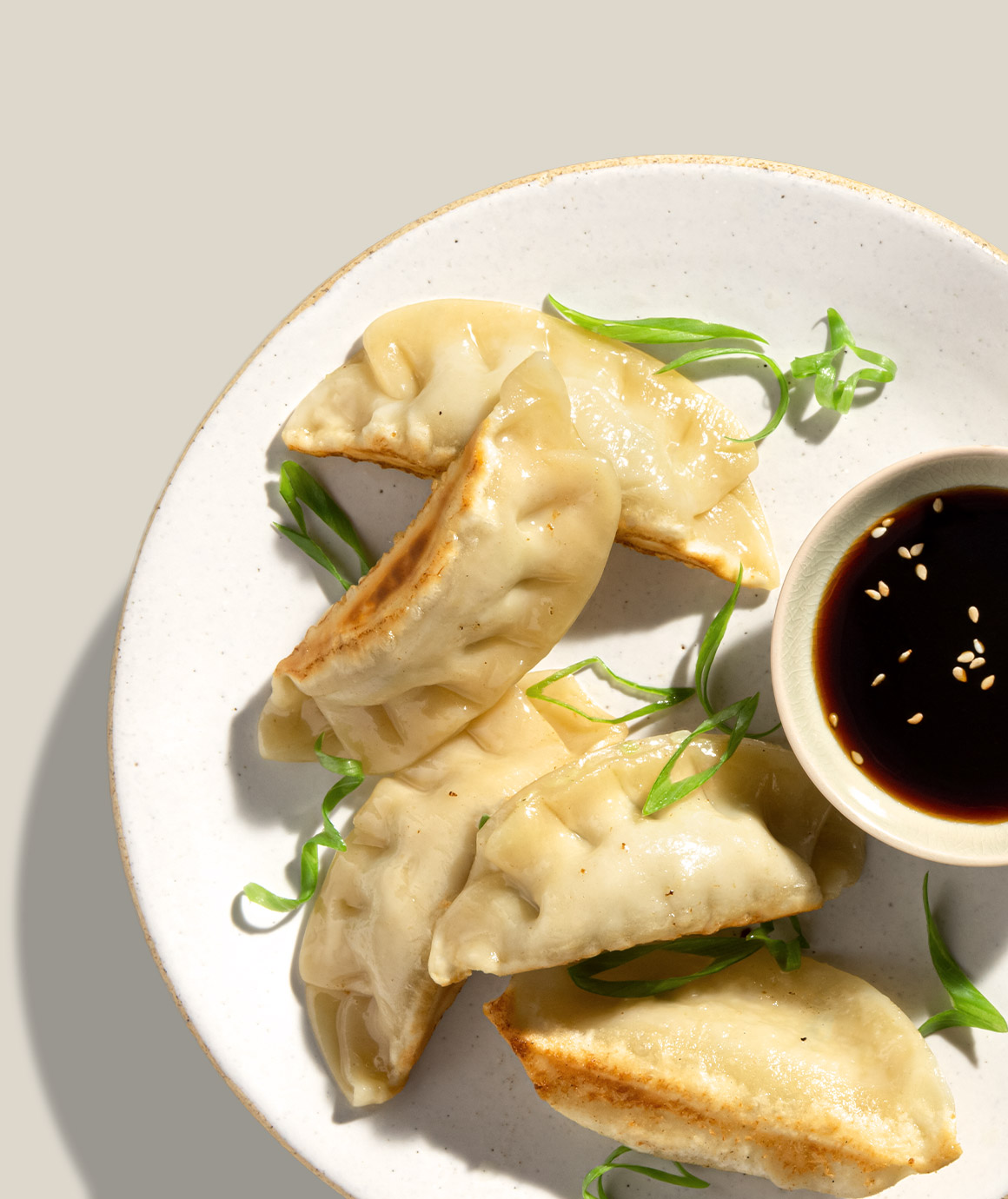 Chicken & Vegetable Potstickers