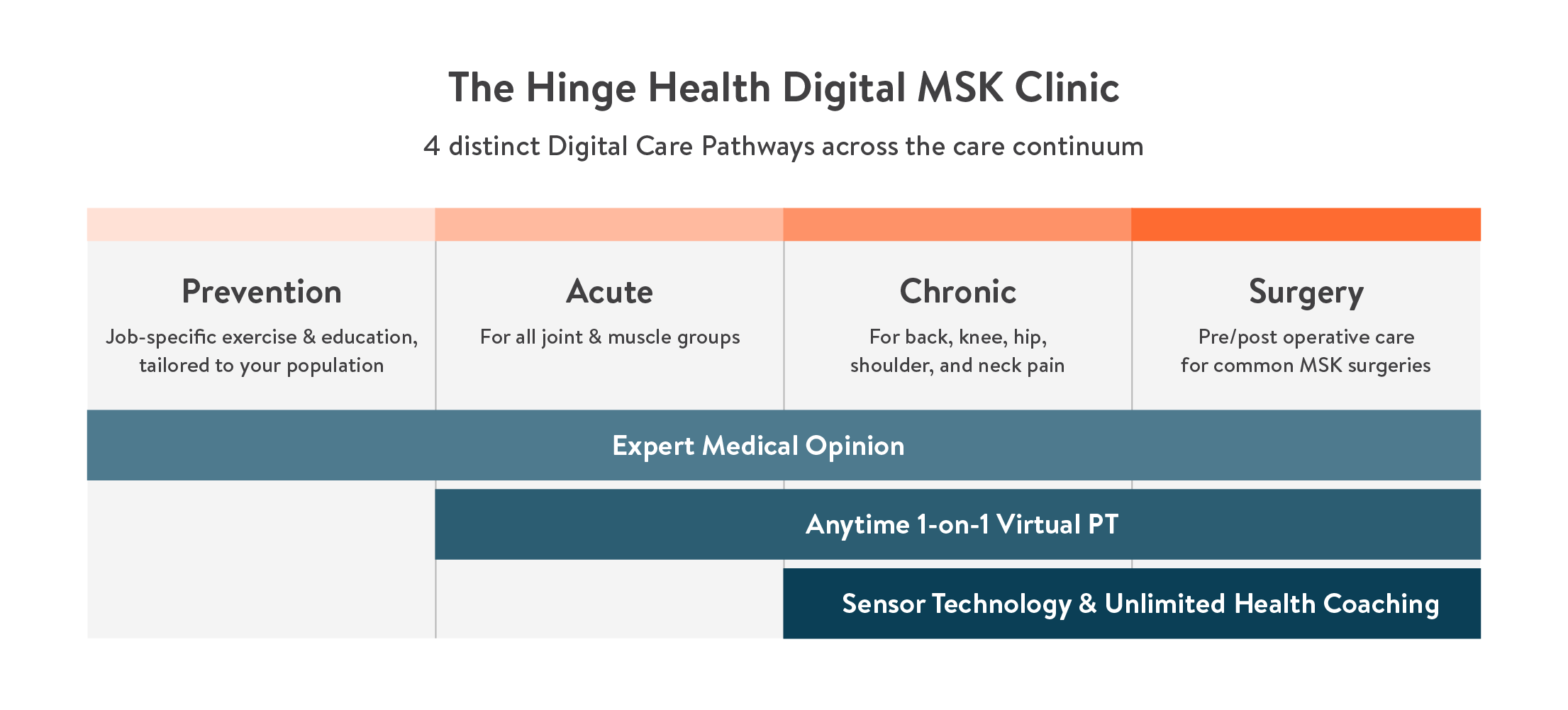 HH Digital MSK Clinic - Updated
