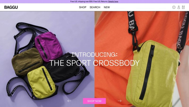 Best Shopify stores Baggu