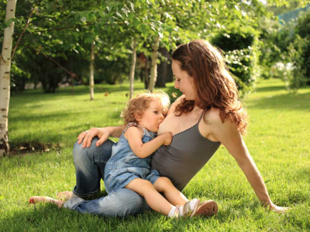 blaue adern brust frühschwangerschaft