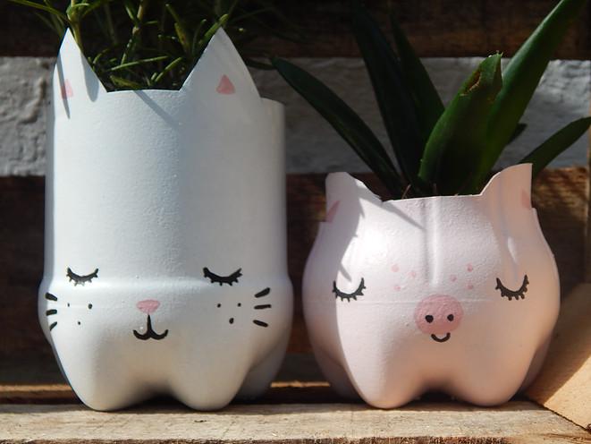 Pet Flaschen Werden Zu Topf Tierchen Wirelternch