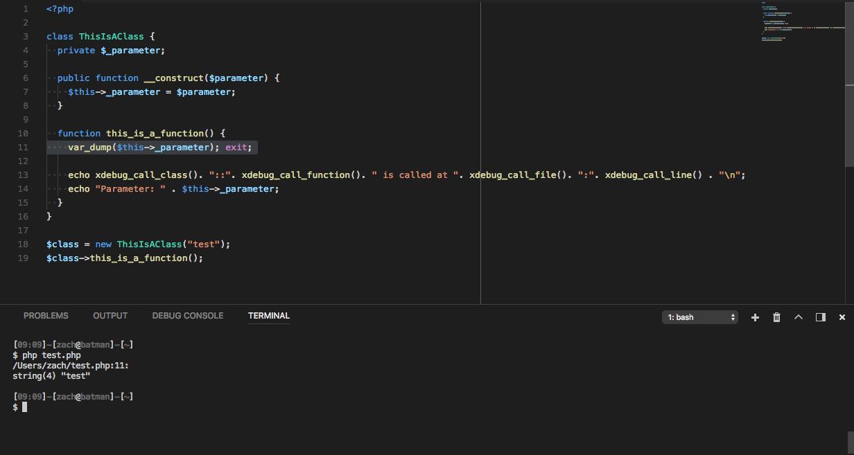 Example var_dump/exit call