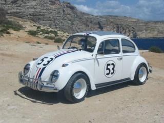 love-bug-VW-beetle1