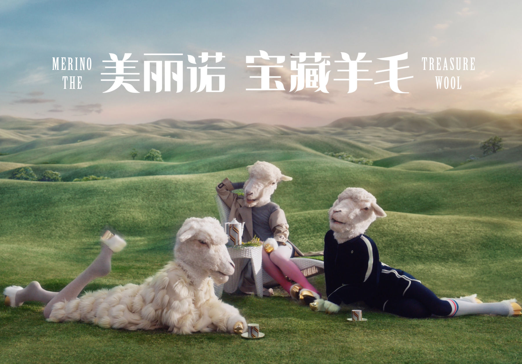 woolmark sheep 1