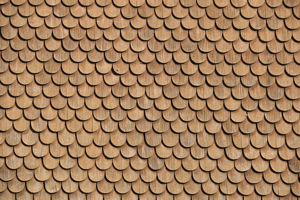 Gonty drewniane – charakterystyka, rodzaje, ich wady i zalety