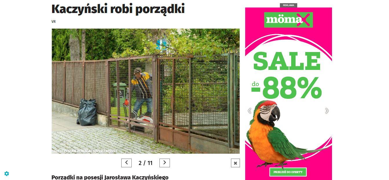 kaczyński i porządki w ogrodzie