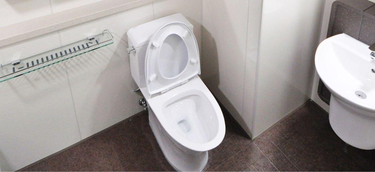 Toaleta trik