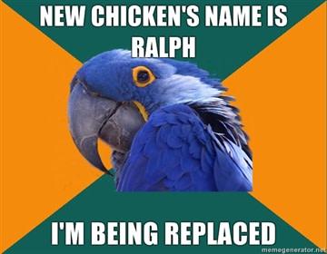 parrot-meme1.jpg
