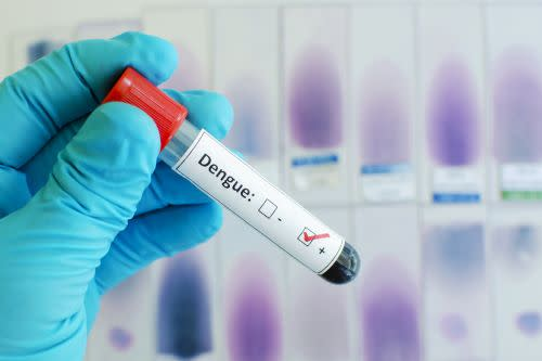 Dengue Blood Test Vial - Shutterstock