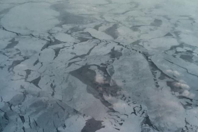 Sea-Ice-768x1024.jpg