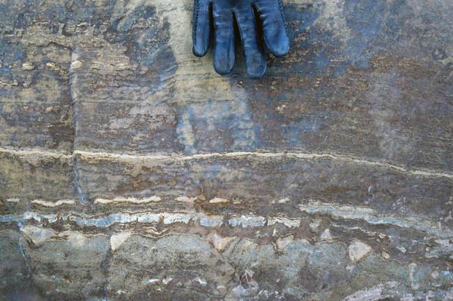 3.7 billion year old fossil or rock, Greenland - Allwood