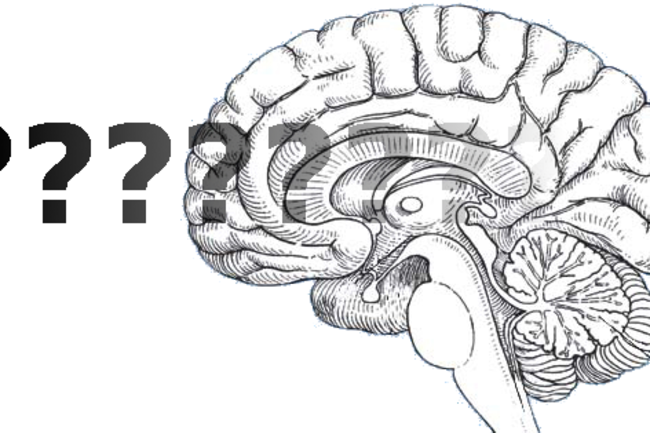 Where Are The Big Ideas in Neuroscience? (Part 1)