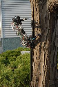 Gecko_robot.jpg