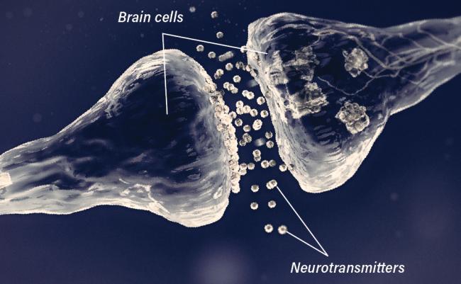 Neurotransmitters Diagram