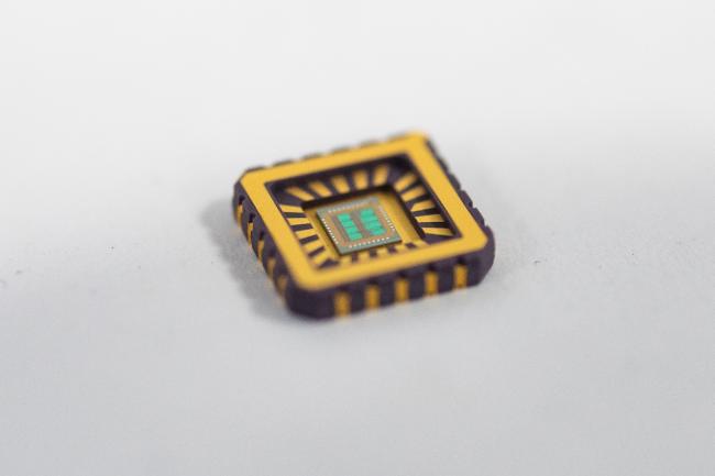 neuron chip