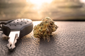Marijuana Might Impair Driving Abilities Even After the High Wears Off