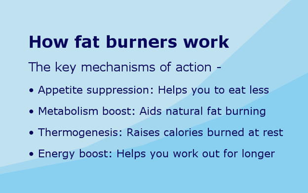 Fat Burners for Women 8