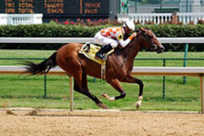 horse_raceweb.jpg