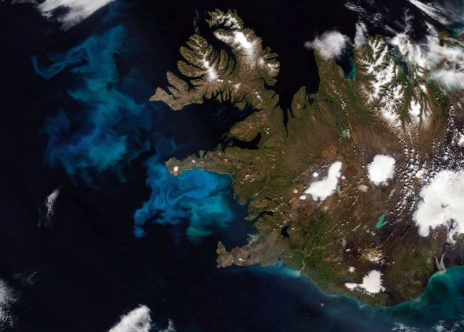 Iceland Plankton Bloom - NASA