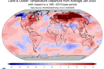 The Heat Goes On: Last Month Was The Warmest January On Record