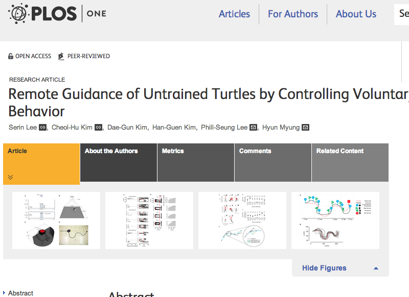 turtle-guidance.png