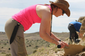 Dating When Dinosaurs Lived is Difficult. This Paleontologist Has Made it Her Mission