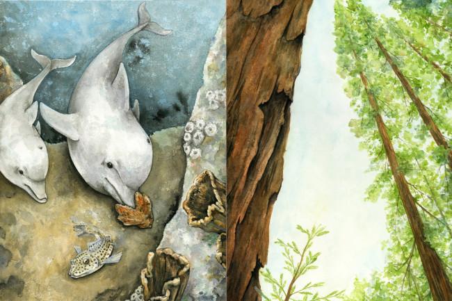 Tree-Dolphins
