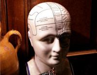 braincn9902.jpg