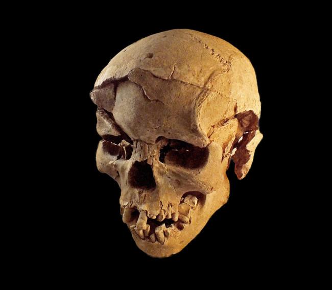 Skull Kenya - Marta Mirazon Lahr