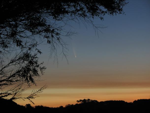 comet_mcnaught_daytime.jpg