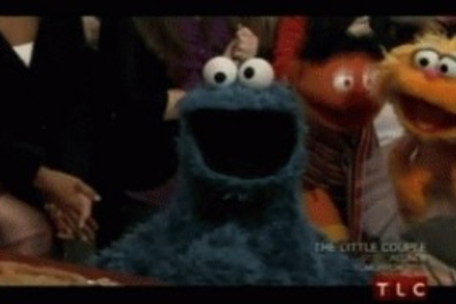 cookie-monster-300x189.jpg