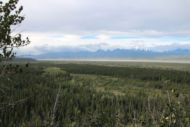 A new review of evidence for the peopling of the Americas suggests multiple routes, including coastal and overland, such as through this Alaskan landscape, were likely. (Credit: Ben A. Potter)