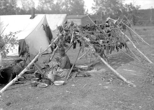 Cree Woman & Racks of Drying Meat - Provincial Archives of Alberta