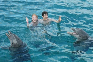 Swimming with dolphins program