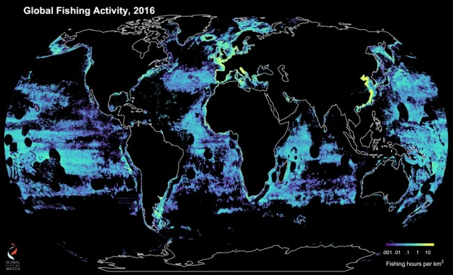 global-fishing.jpg