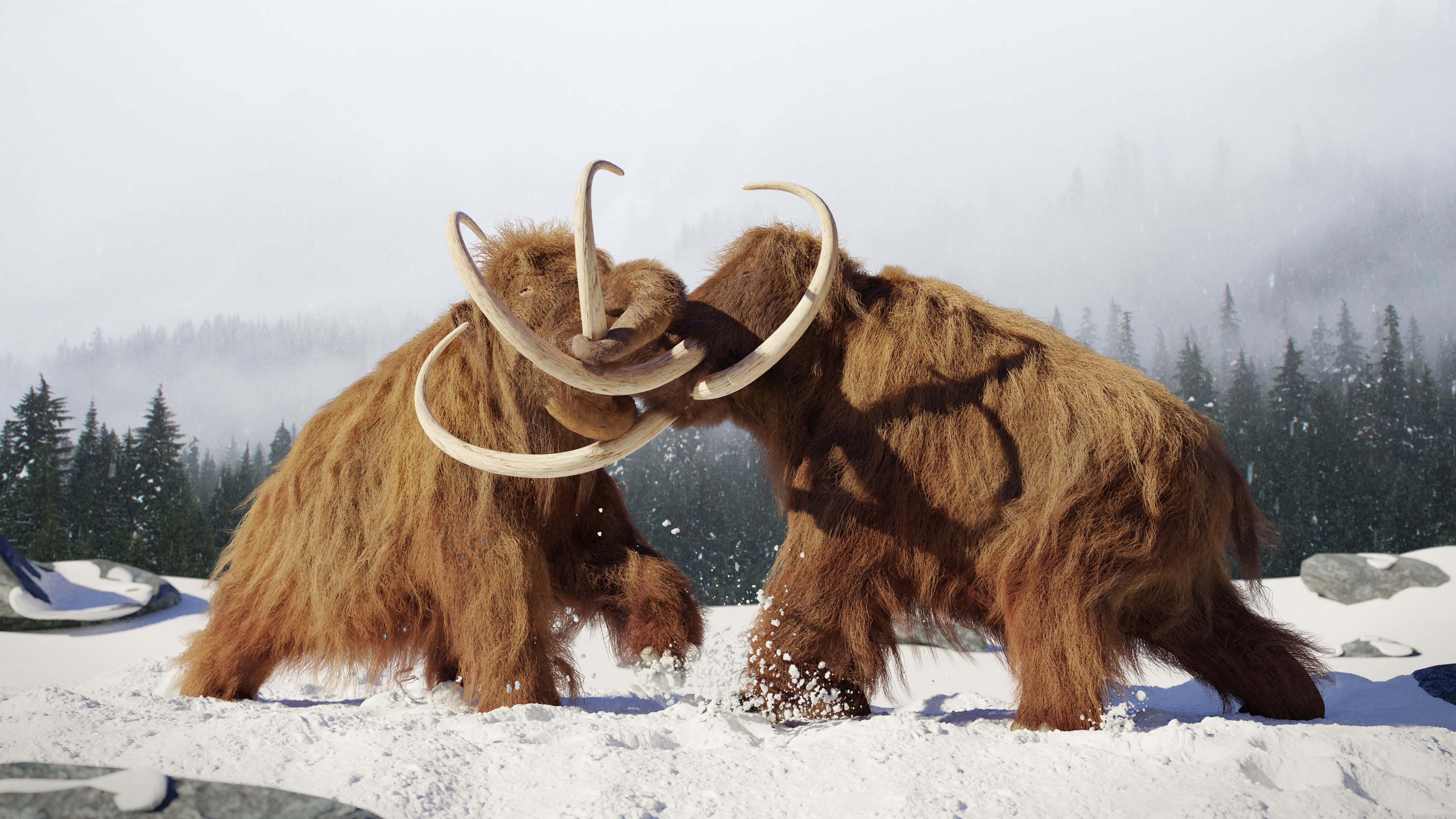 Can We Bring Back Mammoths From Extinction? Probably Not — Here's Why
