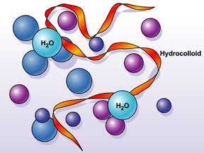 hydrocolloid-1