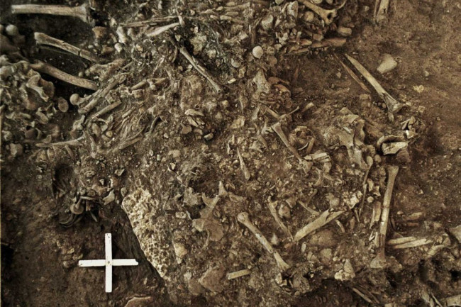 Scientists Discovered The Oldest Human Plague. It Took Down Neolithic Farmers And Changed Europe's History