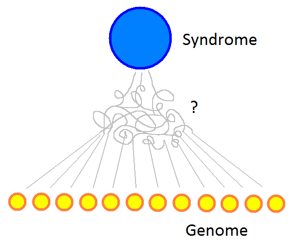 endophenotypes_A.png