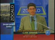zocalo-2nd.jpg