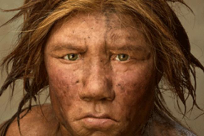 neanderthal-615.png